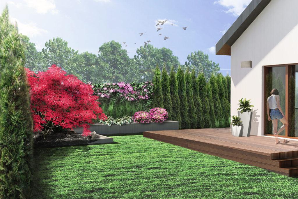 nowoczesny ogród geometryczny - podniesione rabaty z klonem i azaliami