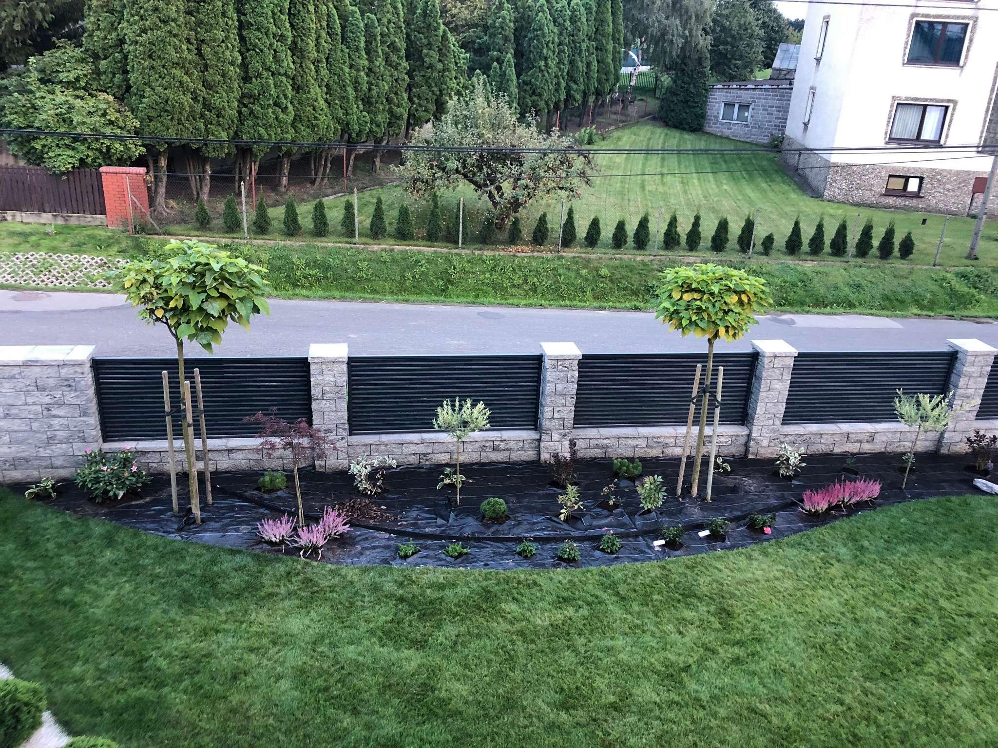 ogród w stylu japońskim po posadzeniu roślin